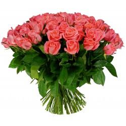 ROOSIKIMP - 71 roosat roosi