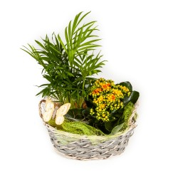 Flower arrangement  -...